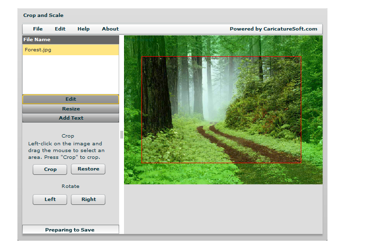 Crop and resize images online