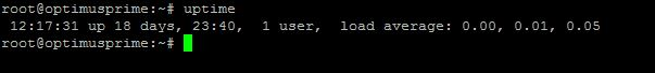 Finding Linux VPS uptime